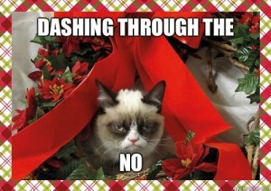 no xmas spirit cat