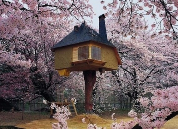 23-Magical-Tree-Houses-19