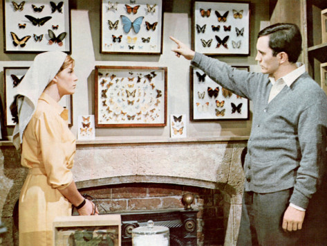 the-collector-samantha-eggar-terence-stamp-1965
