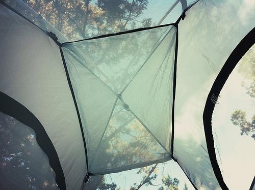 tent wake up