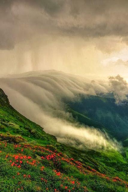Valea Mariilor - Fotografie realizată de Lazăr Ovidiu